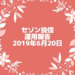 【セゾン投信】2019年6月20日  運用実績