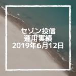 【セゾン投信】2019年6月12日  運用実績