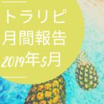 【FX】トラリピ 2019年5月の運用実績まとめ