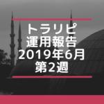 【FX】トラリピ 2019年6月第2週の運用実績