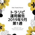 【FX】トラリピ 2019年9月第1週の運用実績