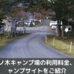 梅ノ木キャンプ場の利用料金、キャンプサイトの詳細をご紹介